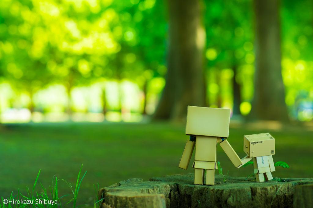 公園の緑を楽しむダンボーたち