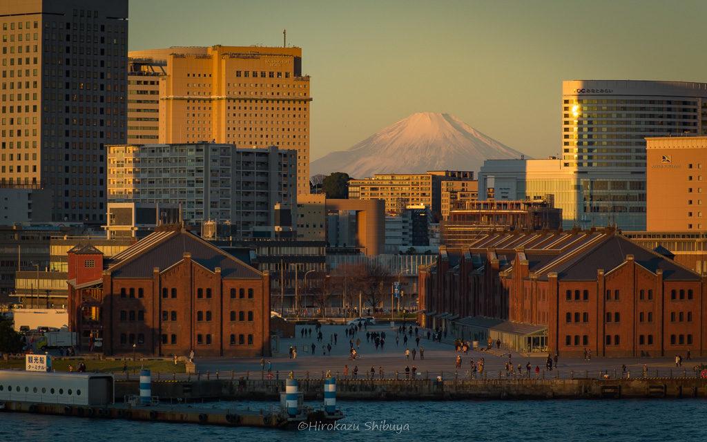 冬(12月、1月、2月)の写真撮影におすすめ被写体~雪化粧した富士山~
